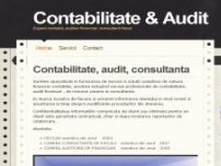 Auditor financiar - www.contabilitateaudit.ro
