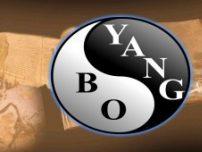 Editura Bo Yang - www.editura-bo-yang.ro