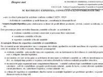 Servicii contabilitate , contabilitate completa , certificare declaratii 101 - www.havreliuc-contabilitate.ro