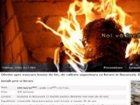 Lemne de foc ieftine pentru Bucuresti si Ilfov - www.lemndears.ro