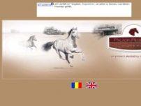 Paladin Residence Corbeanca - www.paladinresidence.ro