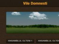 Ansamblul Olteni - www.vile-domnesti.ro